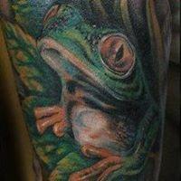 frogpl.
